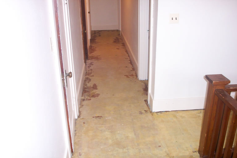 Hardwood Floor Before